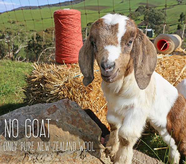 No Goat Campaign PureWoolCarpets