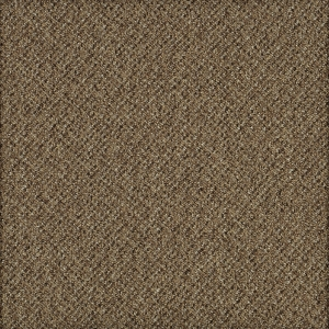 ecare-willowpark-sandygypsum-0722-healthcare-carpet