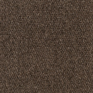 ecsolutions-sensations-savour-711-solution-dyed-nylon-carpet