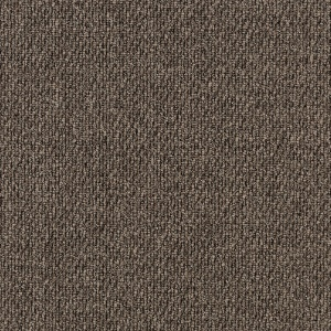 ecsolutions-sensations-velvet-708-solution-dyed-nylon-carpet