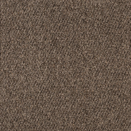 ecsolutions-sensations-terrain-710-solution-dyed-nylon-carpet